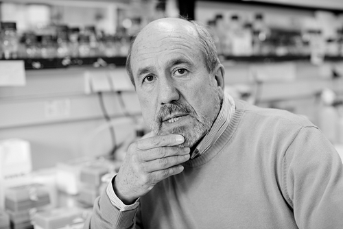 Mariano Esteban, Premio Castilla y León de Investigación Científica y Técnica e Innovación 2020